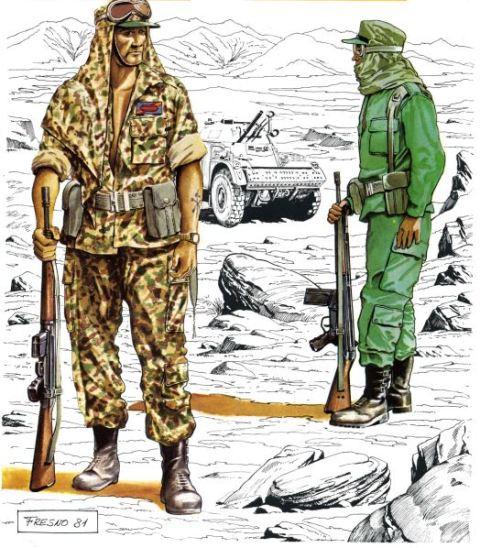 Legionarios De Los Tercios Saharianos Noticias Defensa Láminas Históricas