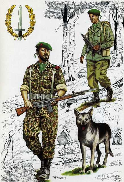 """Compañía de Operaciones Especiales """"Boinas Verdes"""" ( España 1981 ... 528f3bc80ab"""