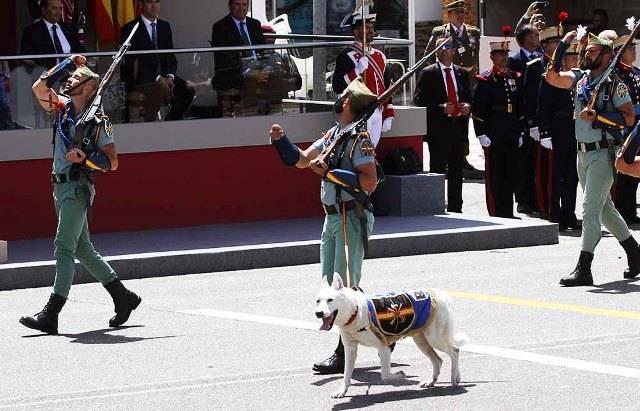El Uniforme De S M El Rey El A400m Y El Perro De La Legion